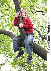 boy sits on branch