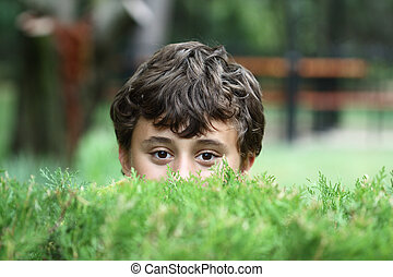 Boy spying on through the hedge
