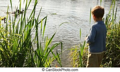 boy stands near pond and feeds flight of weft in park in summer