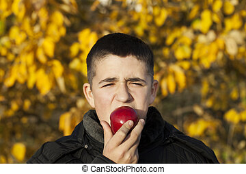 Boy starts to eat an apple