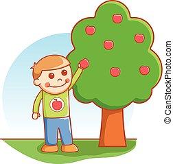Boy taking apple
