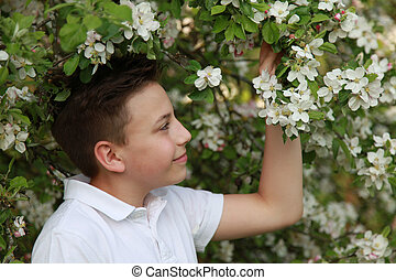 Boy under a blooming apple tree