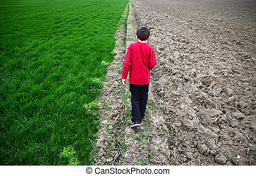 boy walking and green agricultural with barren field