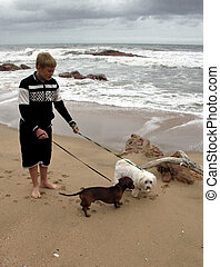 Boy Walking on Beach with Dogs