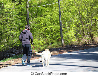boy walking on the road in the woods with a dog