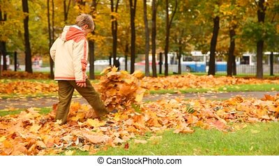 boy walking through fall leaves on ground in park