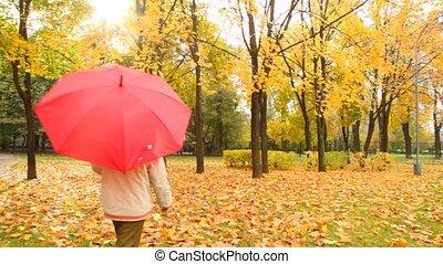 boy walks in autumn park from camera