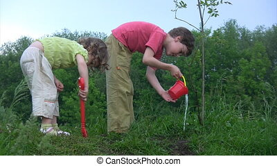 boy watering young plant, girl digging hole