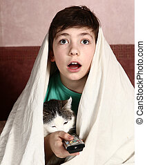 boy with cat watch horror movie - preteen handsome boy with...