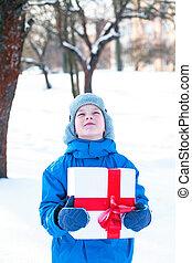 boy with Christmas present