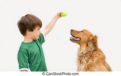 Boy with Dog - Boy Playing Ball with Dog