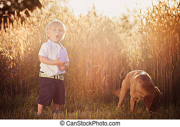 Boy with dog in the field