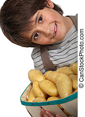 Boy with new potatoes