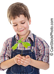 Boy with oak sapling in hands