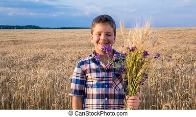 boy with sheaf of wheat pointing to golden field - smiling...