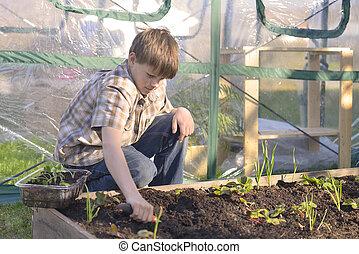 Boy Working in a Garden