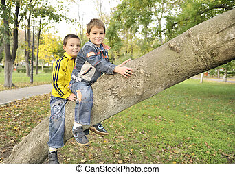 boys hanging from the branch of a tree
