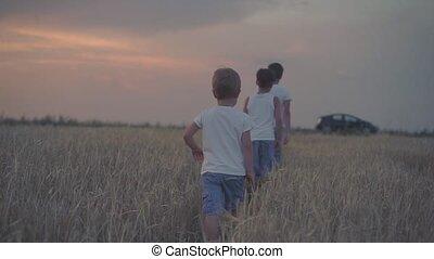 Boys walking in wheat field