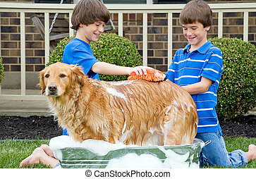 Boys Washing Dog