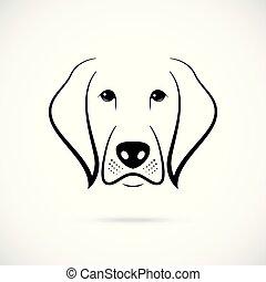 bozal, perro blanco, fondo.