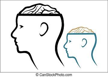 bránit i kdy, mozek