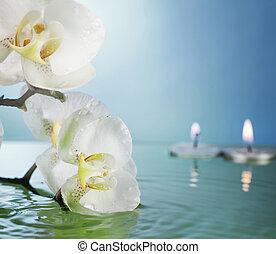 brændende, flyde, candles, og, blomster