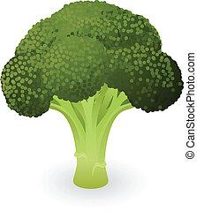 bróculi, ilustración