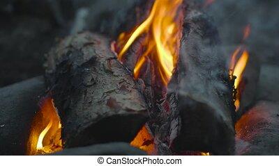 brûlé, 4k, gros plan, journaux bord, video., fire., couver, flamme, brûler, fly., éventer, stones., bois, cendres