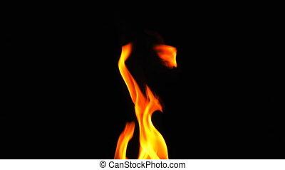 brûlé, brûler, chaleur, arrière-plan noir, flamme