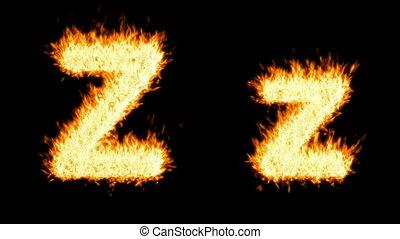 brûlé, caractère, loopable, capital, petit, z