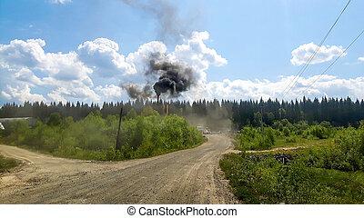 brûlé, laid, milieu, forêt, gaspillage, russie