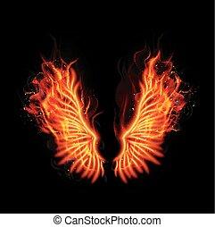 brûler, ailes, brûlé