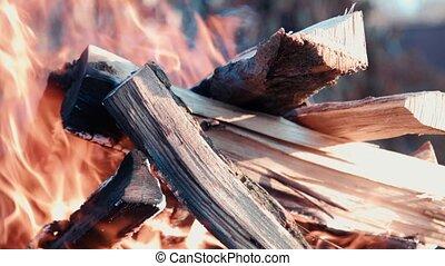 brûler, barbecue, bois brûler