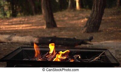 brûler, barbecue, charbon