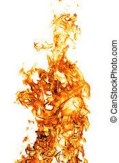 brûler, blanc, backgound, flamme, isolé