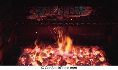 brûler, calamar, grillé, delicacy., rouges, protéine