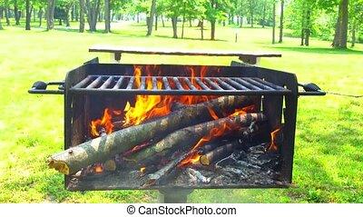 brûler, charbons, chaud, bois