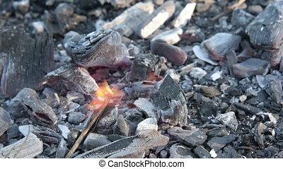 brûler, charbons, mort