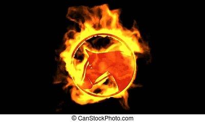 brûler, cheval, symbole.
