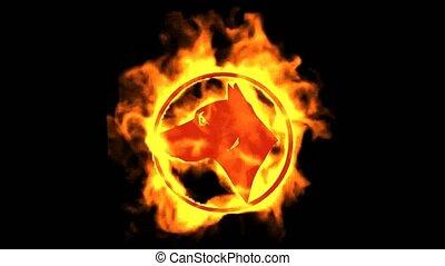 brûler, chien, symbole.