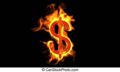brûler, dollar, symbole.