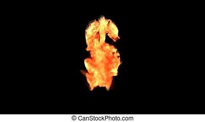 brûler, dollar