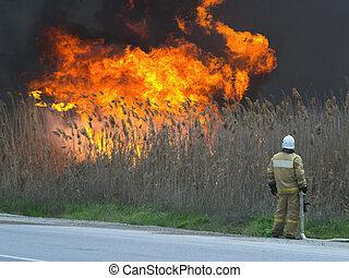 brûler, grand, regarder, pompier