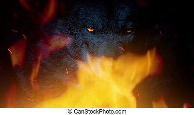 brûler, incandescent, growls, résumé, yeux, loup
