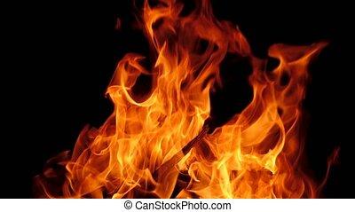 brûler, noir, flamme, fond