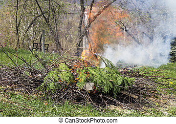 brûler, pendant, branches, fumée, brûlé