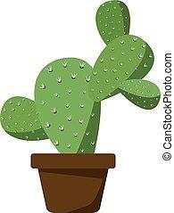 brązowy, garnek, kaktus
