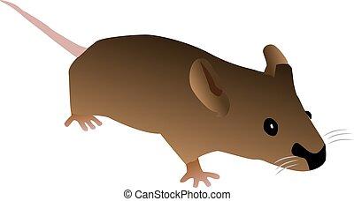 brązowy, mysz, rysunek