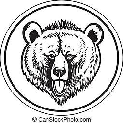 brązowy, wektor, niedźwiedź, siwy