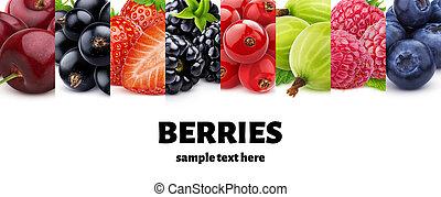 braambes, verzameling, aardbei, framboos, kers, bes, bosbes, rijp, macro, kruisbes